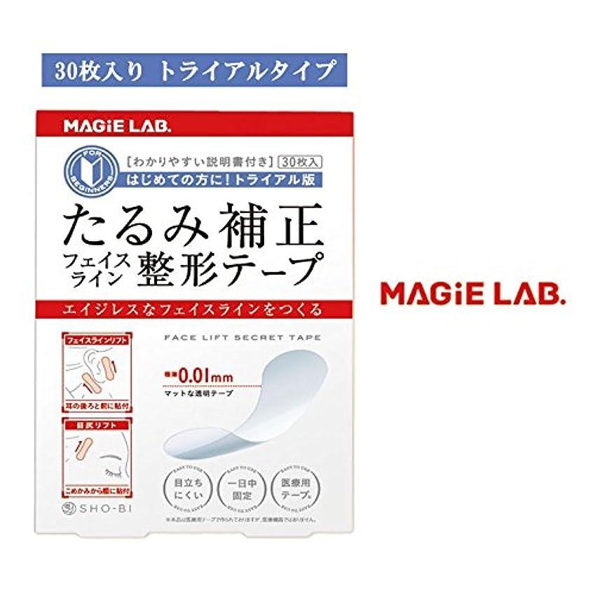 ユニークな伝染病宅配便整形テープ トライアル MG22106