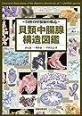 貝類中腸腺構造図鑑: 75種の中腸腺の構造