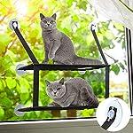 Dadypet 猫ハンモック 猫窓 ベッド 猫マット 吸盤式 夏冬両用 通気性 二段ベッド構造 取り付け簡単 強い吸い付き 耐荷重 12KG サイズ59 * 33cm