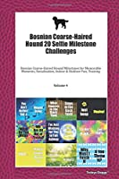 Bosnian Coarse-Haired Hound 20 Selfie Milestone Challenges: Bosnian Coarse-Haired Hound Milestones for Memorable Moments, Socialization, Indoor & Outdoor Fun, Training Volume 4