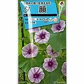 [タキイ 花タネ]ユウガオ(夕顔):赤花 の種 5袋セット