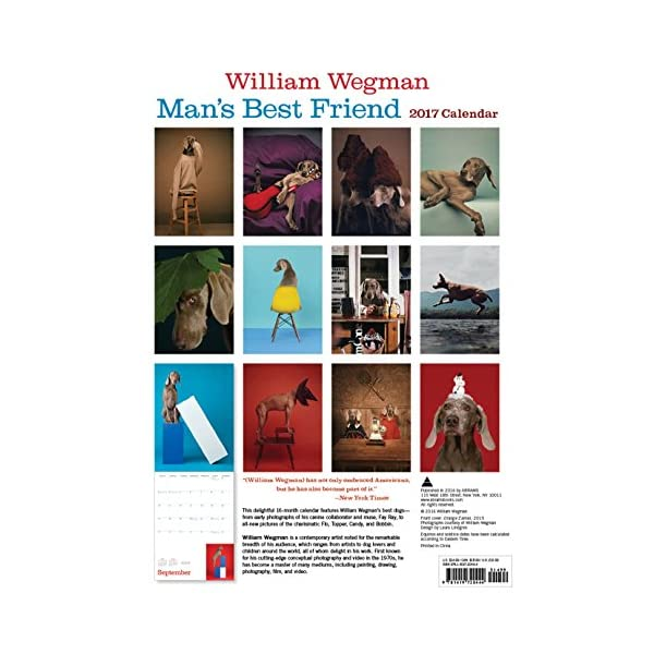 William Wegman Mans Bes...の紹介画像2