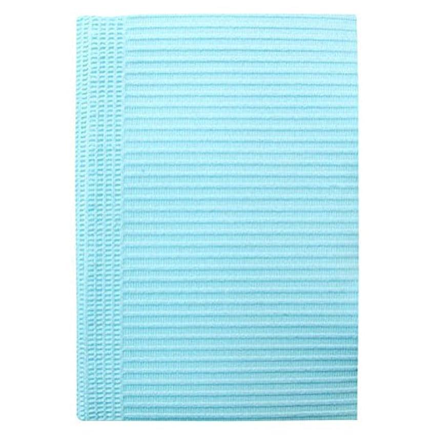 貼り直す禁輸評価SunshineBabe サンシャインベビー ペーパーシート 50枚 ブルー