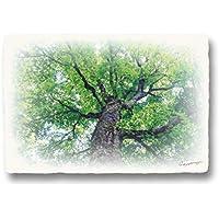 和紙 アートパネル 木 森 初夏 「新緑のブナの大木」 (27x18cm) 絵画 絵 インテリア 風水 玄関 壁 風景画 おしゃれ 壁掛け 壁飾り