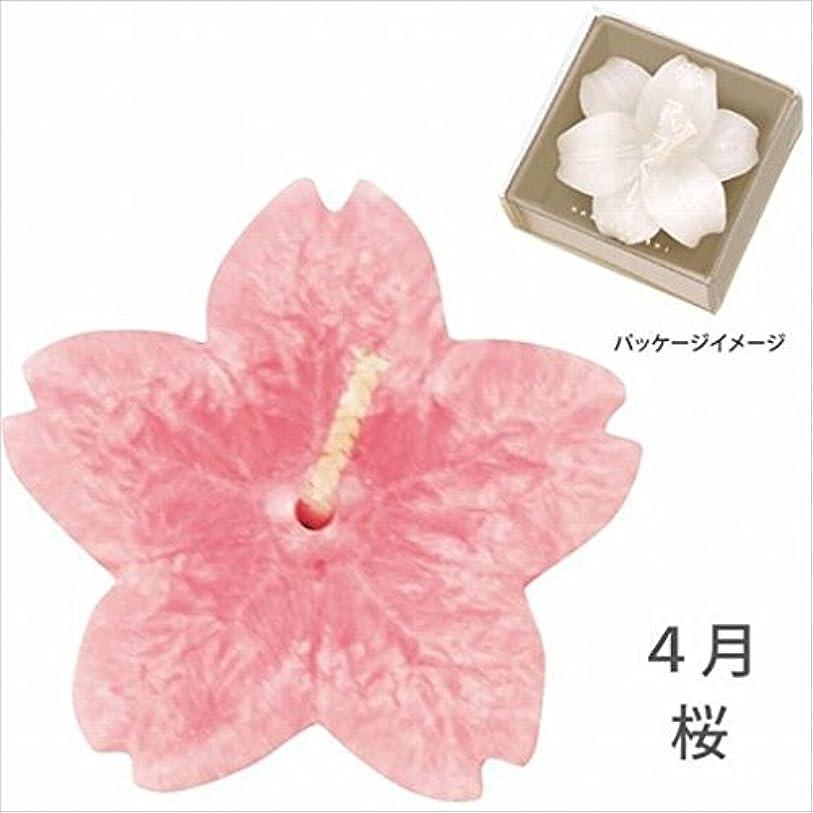 木製火山少ないカメヤマキャンドル(kameyama candle) 花づくし(植物性) 桜 「 桜(4月) 」 キャンドル