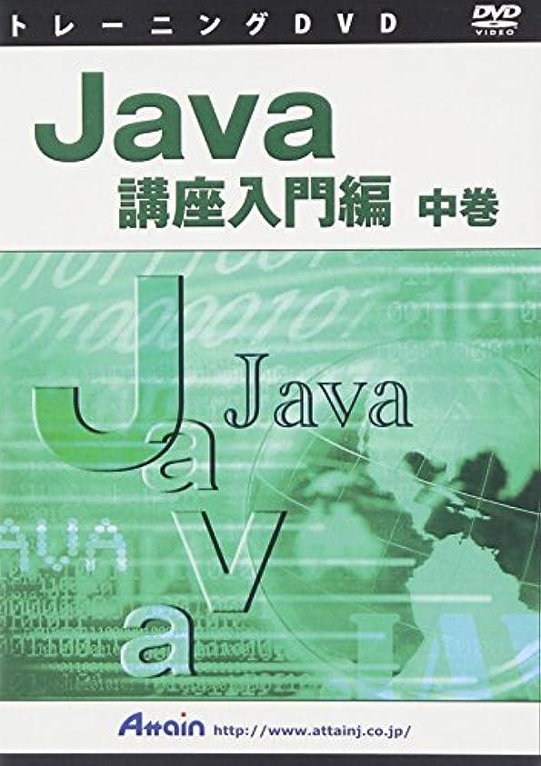 苦痛うっかりコンドームJava講座入門編 中巻 DVD