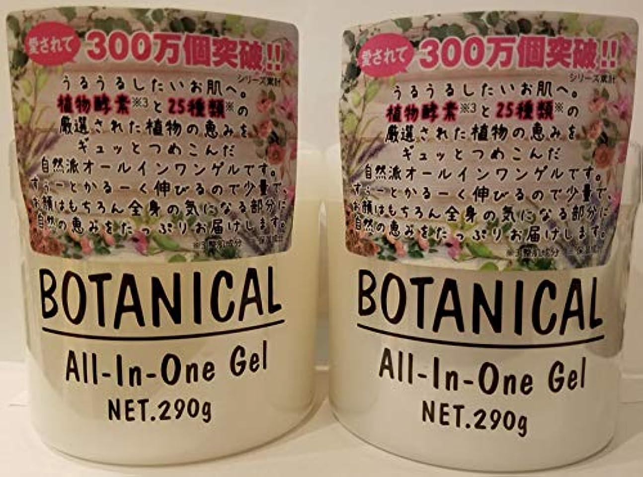 あごひげ胆嚢威するボタニカル オールインワンゲル 290g×2 【2個セット】