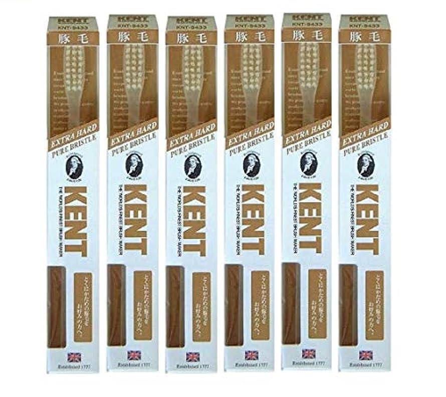 強制ますます健康【6本セット】KENT 豚毛歯ブラシ KNT-9433 ラージヘッド 超かため