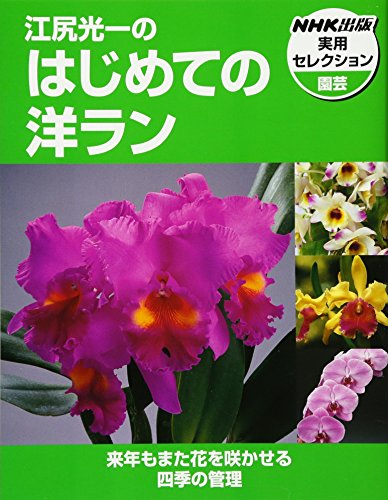 江尻光一のはじめての洋ラン (NHK出版実用セレクション)