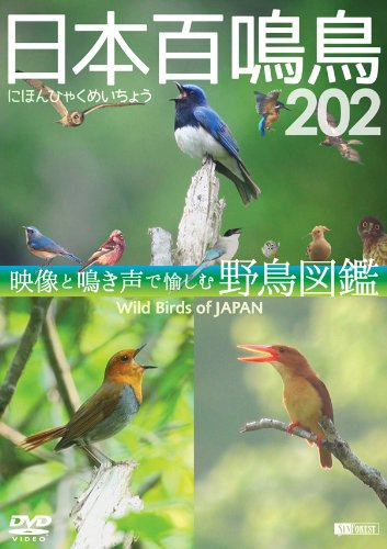シンフォレストDVD 日本百鳴鳥 202 映像と鳴き声で愉し...