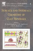 Surface and Interface Chemistry of Clay Minerals (Developments in Clay Science)