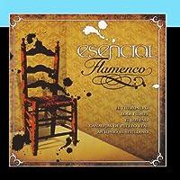 Esencial Flamenco Vol. 12 by Varios Artistas de Flamenco