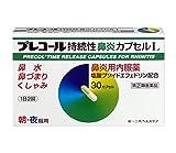 プレコール持続性鼻炎カプセルL 30カプセル