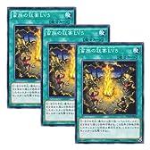 3枚 遊戯王 日本語版 DUEA-JP056 蛮族の狂宴LV5 (ノーマル)