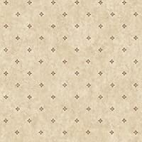 York Wallcoverings lg1357 Ditzyスポット壁紙、Beiges