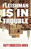 Fleishman Is in Trouble: THE SUNDAY TIMES TOP TEN BESTSELLER (English Edition) 画像