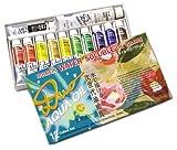 ホルベイン 油絵具 アクアオイルカラー DUO 12色セット DU903 20ml(6号)