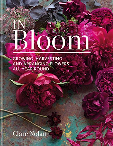 In Bloom (English Edition)