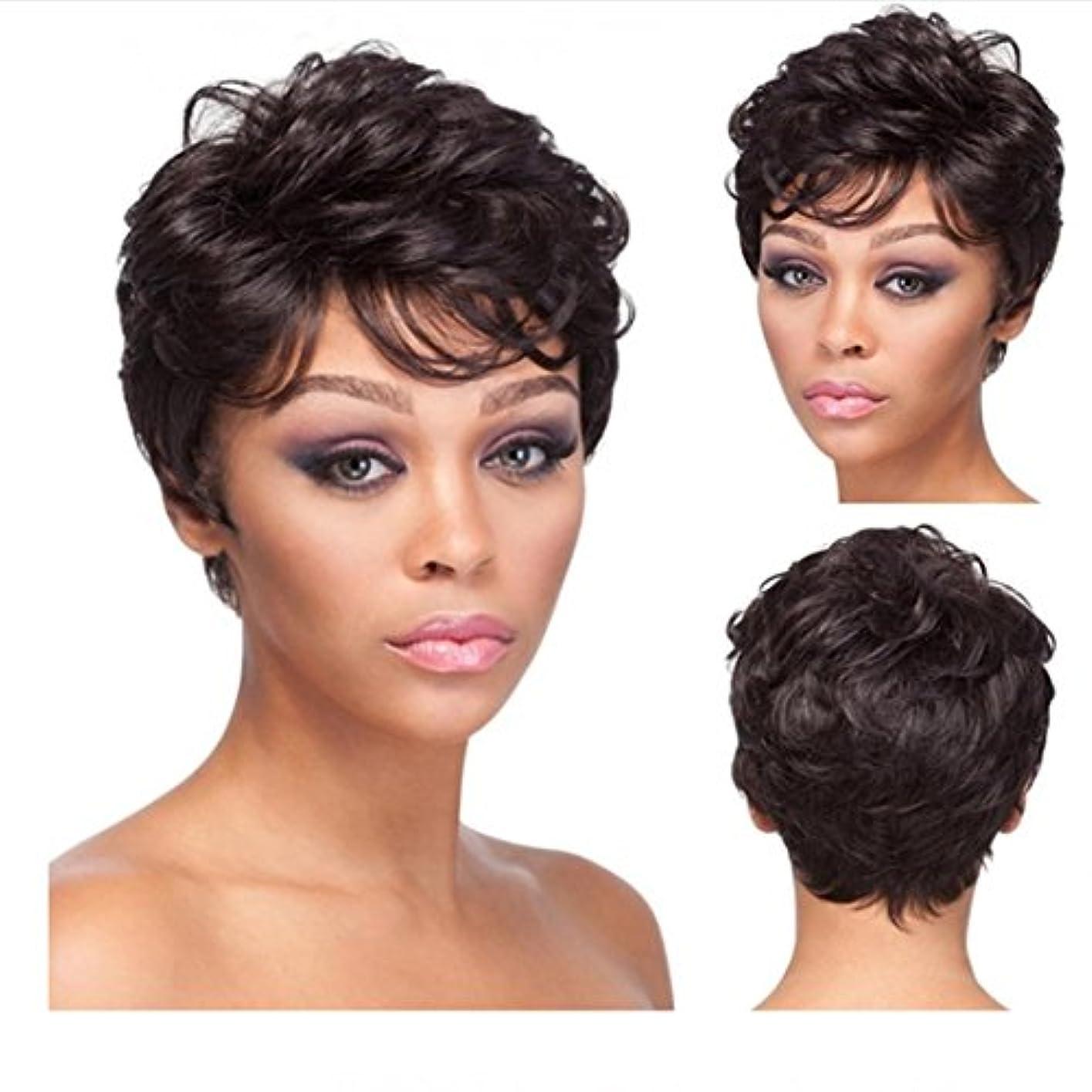 半島免除シールYOUQIU デイリーウィッグ20センチメートル/ 160グラム(黒褐色)かつらのために斜めBagns髪の耐熱ウィッグで女子ショートふわふわマイクロボリュームかつらのために現実的なウィッグ (色 : Brownish black)