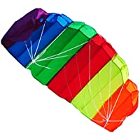 Power Kite for Adults – 47インチデュアルライン光レインボーKiteスポーツParafoil Frameless 1.2 M Kite withコントロールバー