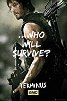 """The Walking Dead–Framed TV Showポスター/印刷( Who Will Survive ?–Daryl Dixon ) ( Size : 24"""" x 36"""" ) ( byポスター停止オンライン) Tesa Poster Strips P4318-Strip"""