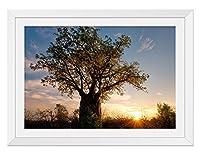 ツリーと夕日 風景の写真 木製額縁 アートポスタ(30cmx40cm白色)