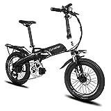 Cyrusher G660 電動アシスト自転車 折りたたみ 20インチ MTBマウンテンバイク 48V*10AHリチウムバッテリー 専用充電器付 荷台付 (ブラック)