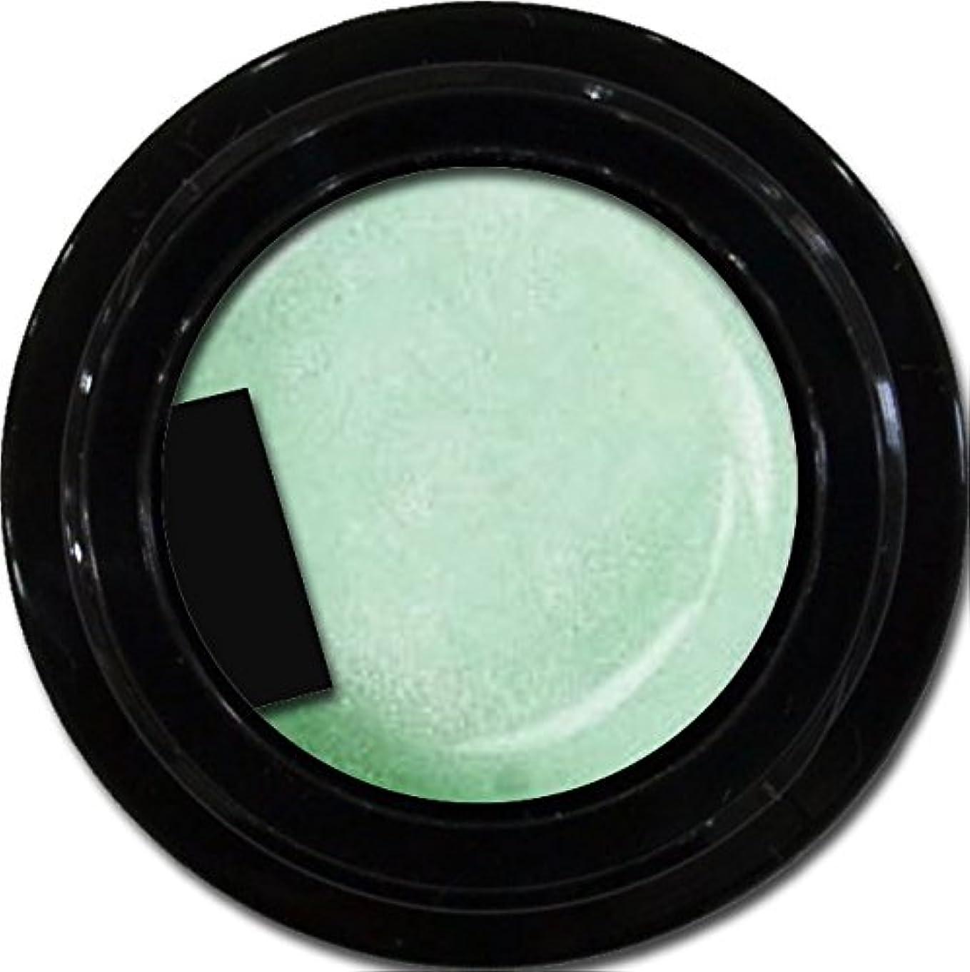アクティビティ見かけ上影のあるカラージェル enchant color gel P701 GreenLilac 3g/ パールカラージェル P701グリーンライラック 3グラム