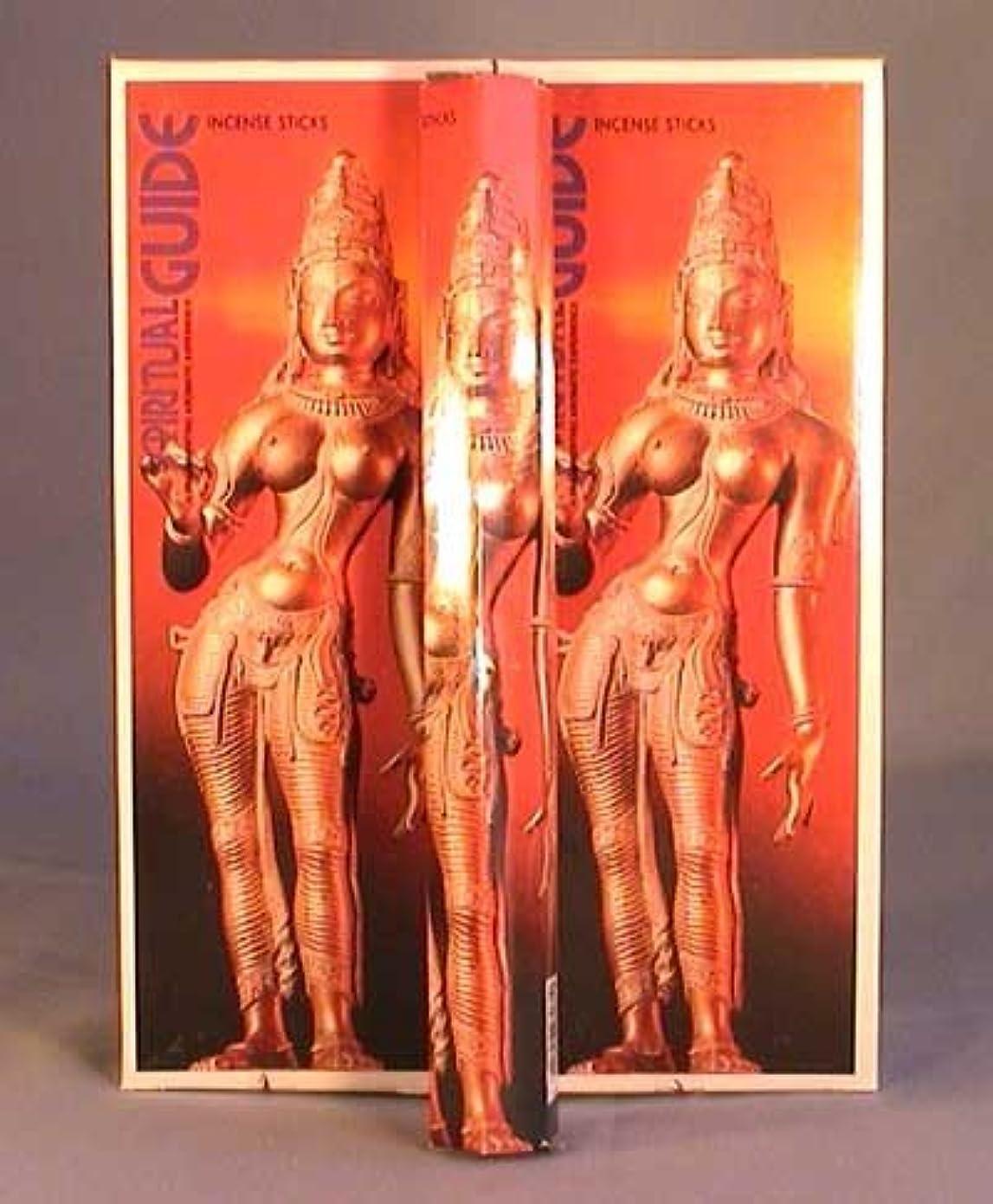 罪人可能フルーティーSpiritual Guide – ボックス6つの20グラム六角チューブ – Padmini Incense