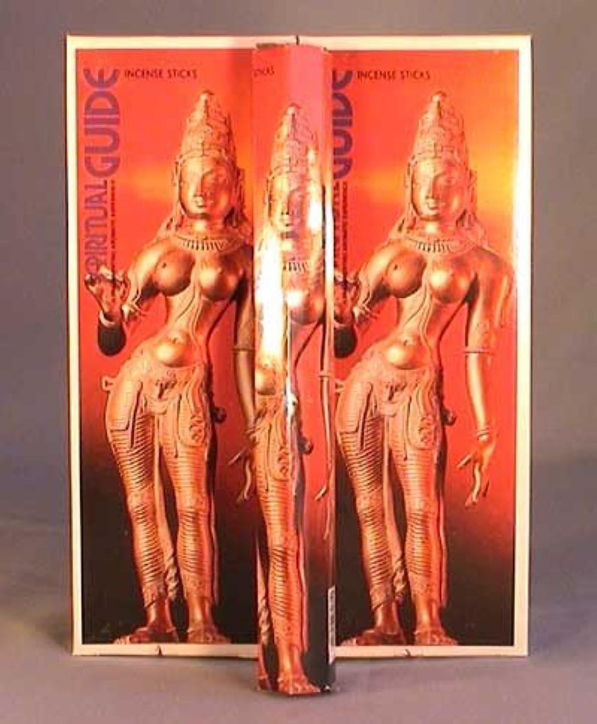 人大砲調和のとれたSpiritual Guide – ボックス6つの20グラム六角チューブ – Padmini Incense