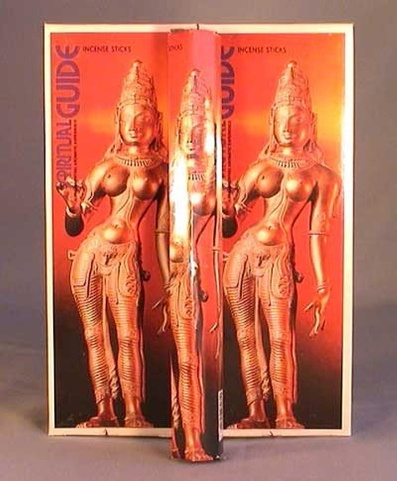 句読点チョコレート縫うSpiritual Guide – ボックス6つの20グラム六角チューブ – Padmini Incense