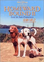 奇跡の旅 2 サンフランシスコの大冒険 [DVD]