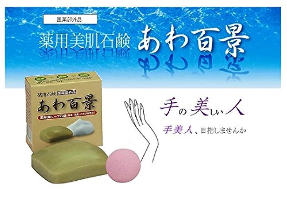 切る競う実質的に手美人、 「あわ百景] 機能石鹸 医薬部外品
