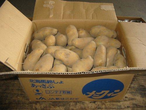 北海道産 メークイン L,2Lサイズ 5kg詰め じゃがいも ジャガイモ