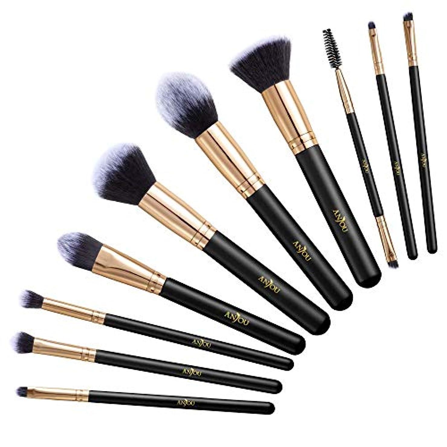 アフリカゴミ箱を空にするロータリーAnjou メイクブラシ 10本セット 化粧ブラシ 化粧筆 フェイスブラシ 毛量たっぷり 高級のタクロン 木製ハンドル [一年間安心保証] AJ-MTA013