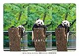 ありがとうシャンシャン ポストカードブック 【スマイルセレクション】 画像