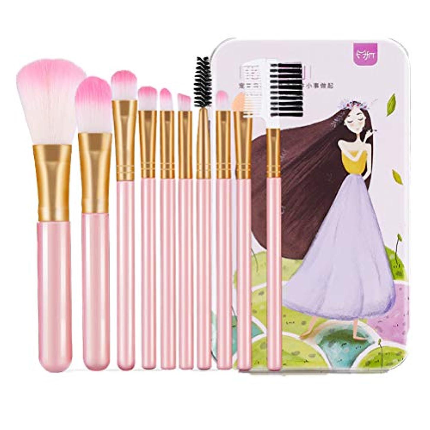 滑りやすい先例援助LSHJP 化粧ブラシ セット 女性 10個 きれいめ 便利 ビューティー 美人 ダンス 旅行 簡単 高品質 高品質 (Color : ピンク, Size : ワンサイズ)