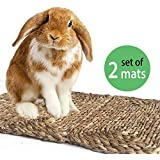 2 Pack Sea Grass Pet Mats for Bunny Rabbit Hamsters Guinea Pigs Chinchilla Pocket Small Animals | Bedding Play Edible Chew Toys for Teeth Wire Cage Floor Safe Rug Pet Accessories