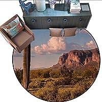 Saguaro プリントエリアラグ フローラルサボテン 最後の日のキャッチング ロングライフ ウエスタンプラントプリント ホームインテリア フォールカープ(直径55インチ) イエローブルーグリーン 6'/1.8m