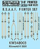 キッツワールドデカール 1/48 第二次世界大戦 アメリカ軍 戦闘機 シートベルト ディテールアップ(3Dデカール) プラモデル用デカール KW3D148003