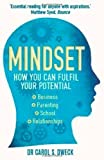 Mindset: How You Can Fulfil Your Potential by Dweck Carol on 02/02/2012 unknown edition