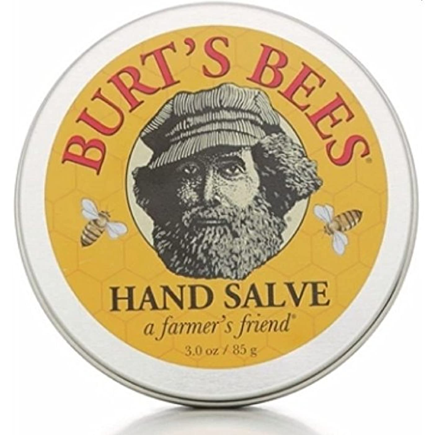 甘やかす面積砲兵バーツビーズ Burts Bees ハンドサルブ 85g 【並行輸入品】
