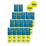 ブリヂストン 硬式テニスボールツアープロ 1箱(15缶 60球)+2缶増量(8球)