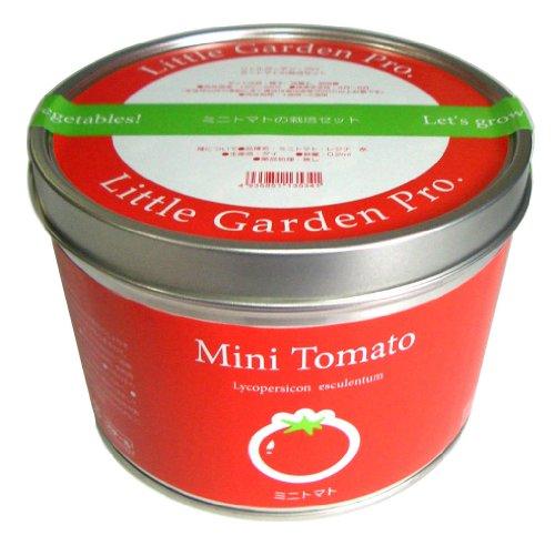 ミニトマトの保存方法|ミニトマトを美味しく活かしたレシピ4つ