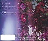 手遅れcaution(TYPE-A)(DVD付) 画像