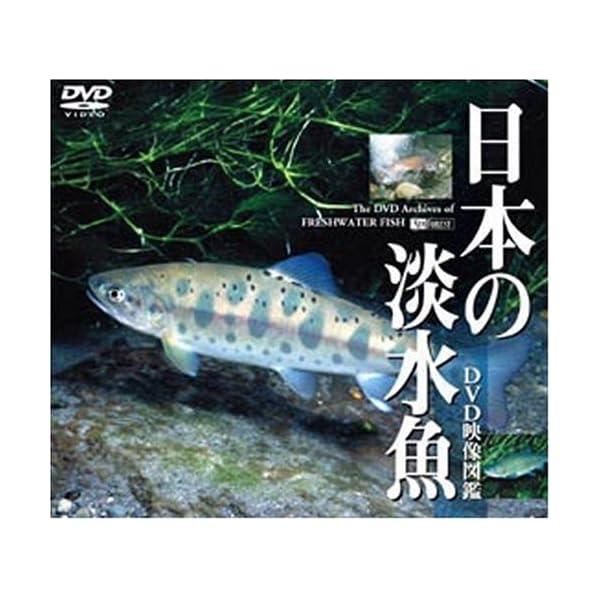 シンフォレストDVD 日本の淡水魚 DVD映像図鑑の商品画像