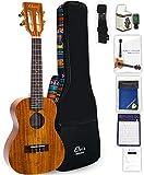 ELVIS エルビス ウクレレ コンサートサイズ ハワイアンコア材 K100C 高級エスニック風ケース付き(国内保証書・チューナー・教則本・コードチャート・ギグバッグなど8点セット)
