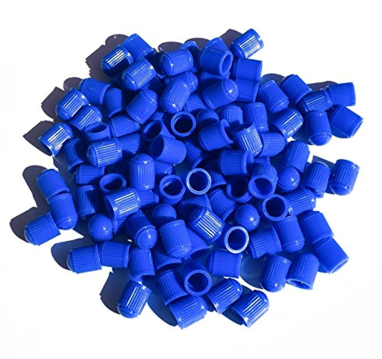 宴会宝石参照するカラープラスチックタイヤバルブステムキャップ 25個パック
