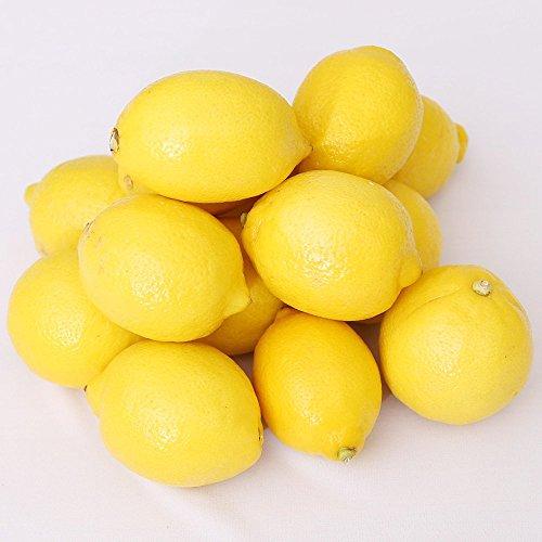 レモン (30玉) 新鮮 フルーツ
