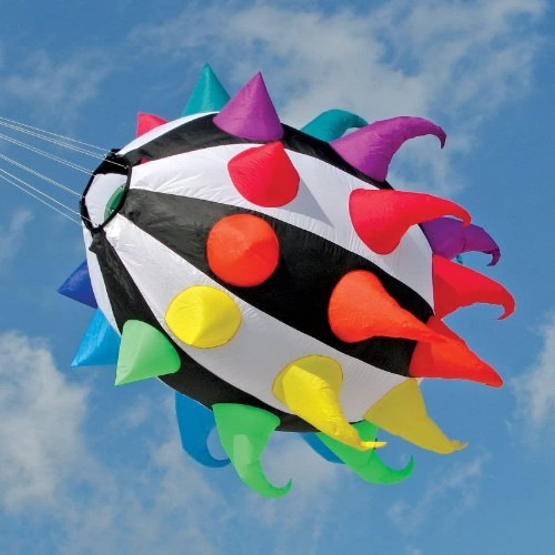 56-in Isopod Kite Line Laundry by Premier Kites [並行輸入品]